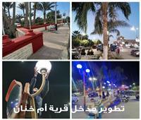 تطوير وتجميل مدخل قرية «أم خنان» بالحوامدية