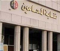 بأمر القضاء الإداري.. وقف انتخابات نقابة المحامين بالمحلة