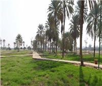«تطوير الريف».. مشروع يحمل التنمية لـ58 مليون مواطن   فيديو