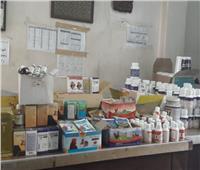 «الزراعة»: تفتيش 268 مركزًا لبيع الأدوية واللقاحات البيطرية خلال يناير