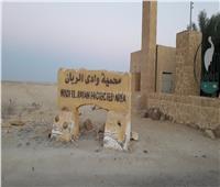 رحلة في محمية وادي الريان (1) | من البوابات إلى شلال الملك فاروق.. صور