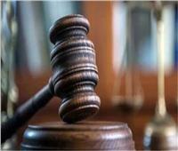 براءة مزارع من سرقة «الحمير» بنجع حمادي