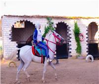 حكايات| الصعيد الجديد.. الجنس الناعم يمتطي ظهور الخيول بـ«حنية»