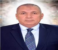 مجلس الوزراء يخصص ٢٨٩ ألف فدان للأنشطة التنموية بـ«الوادي الجديد»