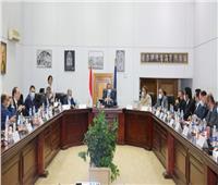 مجلس إدارة المتحف المصري الكبير يعقد اجتماعا لمناقشة تطورات الأعمال