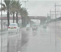 أمطار برق ورعد.. الطقس السيء يضرب الغربية| فيديو