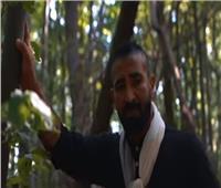 """بالفيديو: سعد يسيطر على التريند بـ""""بناقص"""".. و«افرح» بمشاركة الفشنى"""