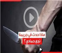 فيديوجراف| مقتل معلم أزهري وتمزيق جسده.. ماذا حدث في جريمة نجع حمادي؟