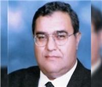 المحكمة الدستورية: رفض الدعوى ببطلان حظر إقامة منشأت فوق خطوط أنابيب البترول
