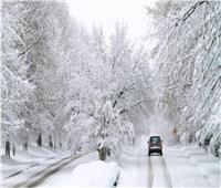 بسبب العواصف الثلجية..الحكومة الهولندية تناشد المواطنين البقاء في المنازل