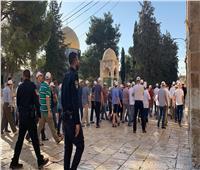 48 مستوطنا إسرائيليًا يقتحمون باحات المسجد الأقصى