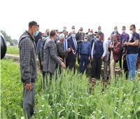 وزير الزراعة يتفقد حقول القمح ويتابع مراكز تجميع الألبان بالفيوم| صور