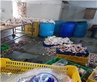 ضبط 400 كيلو لحوم غير صالحة للاستهلاك في حملات بالإسكندرية
