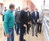 رئيس جامعة المنوفية يتفقد مزرعة الراهب