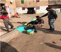 مبادرة «مجلس إدارة الشارع» تغزو شوارع وقرى البحيرة ..والشباب يجملون القرى بالجهود الذاتية