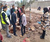 زين العابدين يتابع أعمال الرصف بنطاق حي ثان المحلة