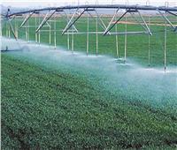 خبراء الزراعة: الري الحديث يوفر المياه المهدرة بنسبة 80%