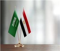 مصر تدين بشدة هجوم الحوثيين على مطار أبها السعودي