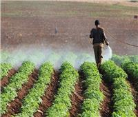 الزراعة: حملات دورية على أسواق المبيدات لضبط المخالفين