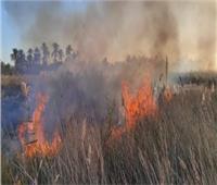 السيطرة على حريق في مزرعة نخيل بإحدى قرى بئر العبد