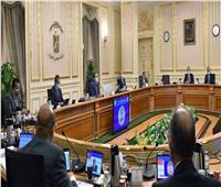 8 شائعات رصدتها الحكومة في أسبوع.. أبرزها «تأجيل الدراسة»