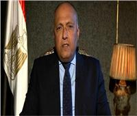 وزير الخارجية: مصر عندما تلتزم بوثيقة تحترمها