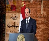 ممثلو المجتمع المدني يُشيدون بمبادرة السيسي في تطوير القرى المصرية