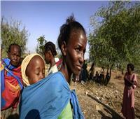 الأمم المتحدة تحذر من تفاقم مشكلة الجوع في إقليم تيجراى الإثيوبي
