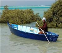 سياحة «الكامب» ملاذ محبي الطبيعة في البحر الأحمر