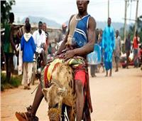 الضباع .. قبيلة تعالج الأمراض بالجلوس على ظهور الفهود