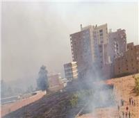 رجال الإطفاء يخمدون حريق بقش القصب في نجع حمادي | صور