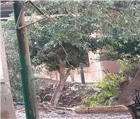 الأمطار تتسبب في سقوط عامود كهرباء بالغربية