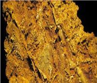 «الثروة المعدنية»: مد أجل إغلاق مزايدة البحث عن الذهب لـ15 مايو المقبل