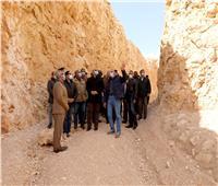 لجنة بيئية لدراسة تطوير محمية كهف سنور ببني سويف