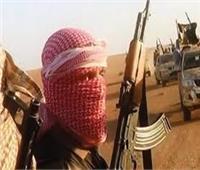 13 مارس.. أولى جلسات محاكمة 12 متهمًا بـ«داعش إمبابة»