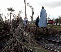 بسبب شدة الرياح.. سقوط شجرة وعمود إنارة على شريط السكة الحديد بالدقهلية