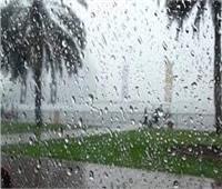 «زراعة المنوفية»: توصيات لتفادي الأضرار التي تسببها سوء الأحوال الجوية