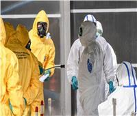 جورجيا تسجل 388 حالة إصابة جديدة بكورونا خلال 24 ساعة