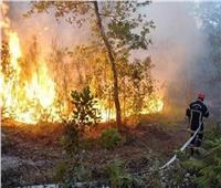 السيطرة على حريق في 3 أفدنة من القصب بقنا