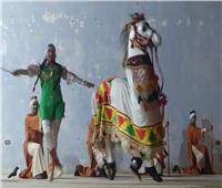 «قصور الثقافة» تعرض حفلات لفرق الفنون الشعبية بمسارح أسوان  صور