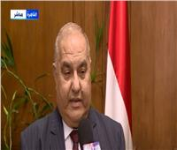 رئيس المحكمة الدستورية: مصر بذلت جهودا للحد من آثار جائحة كورونا على المصريين