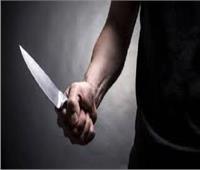 «عامل» يقتل زميله بآلة حادة فى «قويسنا»