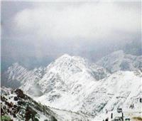 في مشهد نادر بالسعودية.. «الشيكولاتة» تُغطي قمم جبال المملكة| فيديو