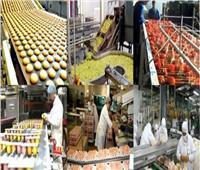 «الرقابة الصناعية»: نستهدف مطابقة المنتجات لمعايير الجودة المصرية والعالمية