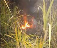 السيطرة على حريق زراعات القصب في قنا