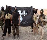 تأجيل أولى جلسات محاكمة 8 متهمين بـ«داعش حلوان» لـ 29 مارس