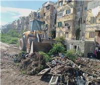 رفع 1430 طنا من القمامة استجابة لشكاوى أهالي غيط العنب بالإسكندرية