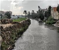 شاهد| أمطار غزيرة على محافظة الجيزة