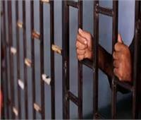 الحبس وغرامة 200 ألف جنيه لمتهمين في قضية «فتاة التيك توك منة عبد العزيز»