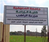 مجلس جامعة المنوفية يعقد جلسته بالمبنى الإدارى بـ «مزرعة الراهب»